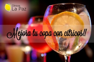 gin tonic viernes 09