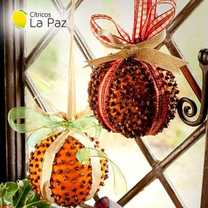 Christmas Decoration with citrus
