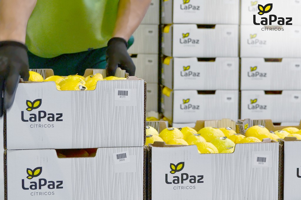 limones made in spain